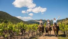 Grupo de turistas cabalgando entre los viñedos de la región del Maule, disfrutando con los brazos abiertos el paisaje