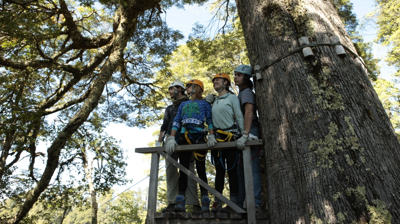 Imagen de un grupo de turistas realizando canopy en los bosques de la reserva de Huilo Huilo