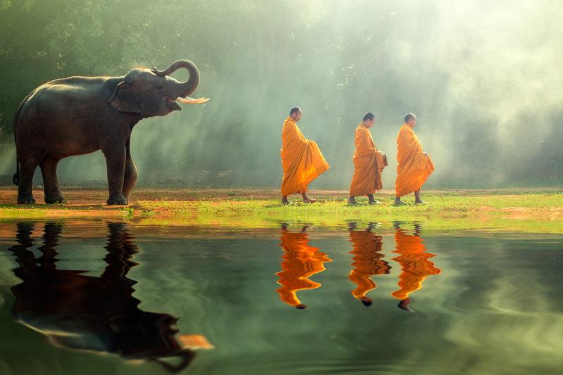 Imagen de unos monjes budistas junto a un pequeño elefante en el santuario de estos animales en Tailandia