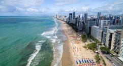 Imagen de las payas de Brasil