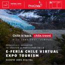 Gráfica del evento Chile Virtual Expo