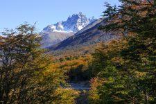 Fotografía paisaje Parque Nacional Cerro Castilllo