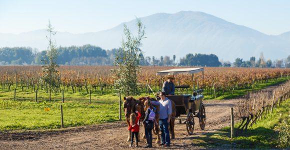Familia en una viña junto a una carreta típica